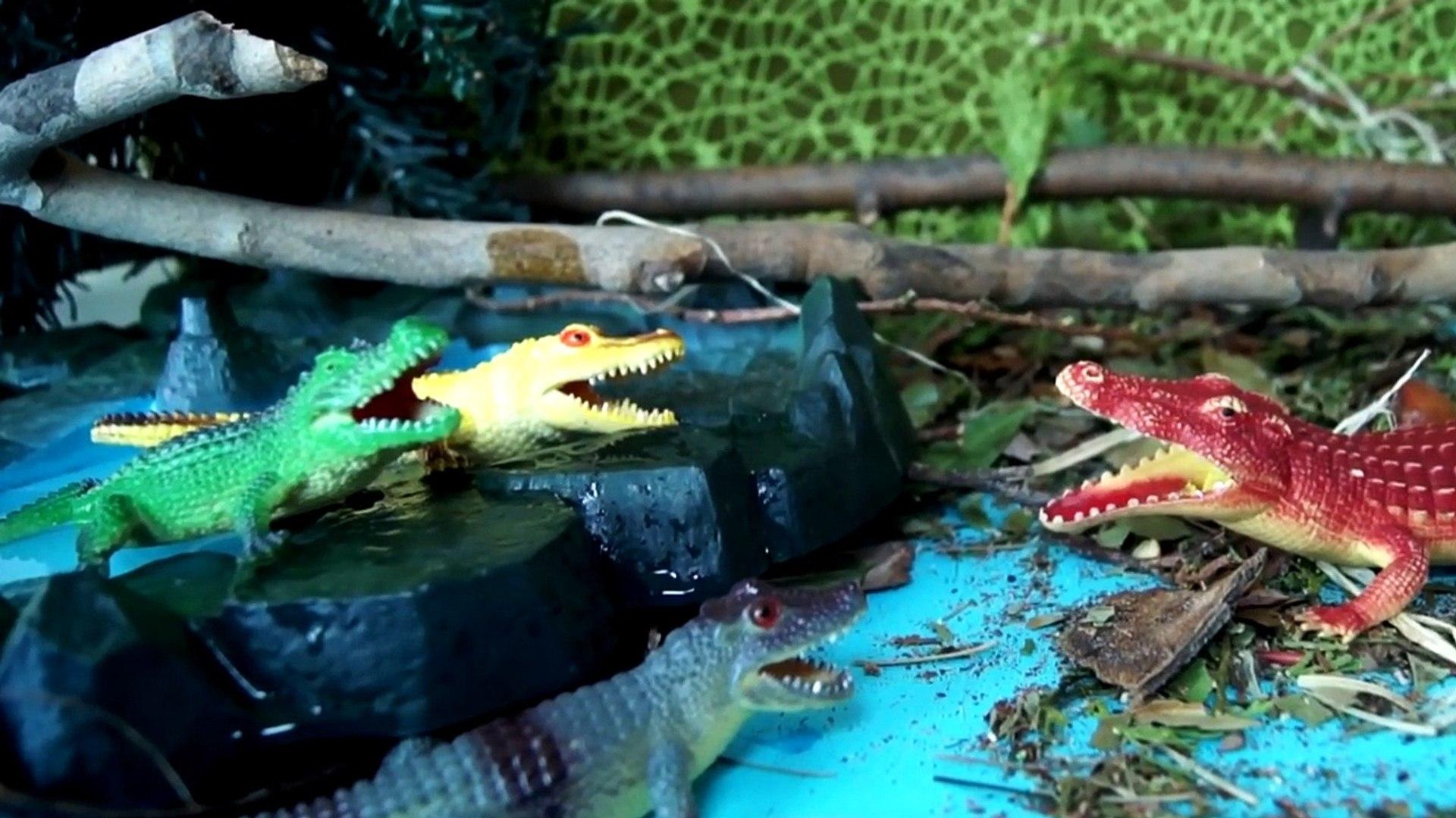 Мультики про животных. Охотник на крокодилов. Бой насекомых. Сборник мультфильмов. Для детей