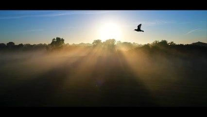 Marco Borsato - Alsof Je Vliegt