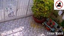 Un cambrioleur se pète la jambe en voulant forcer un portail