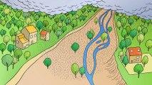 Des cours d'eau en pleine forme