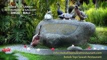 Bebek Tepi Sawah Restaurant & Gallery Ubub Bali