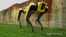 Ce nouveau robot chien autonome est... flippant !! Intelligence Artificielle