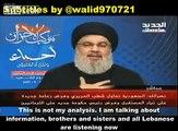 Nasrallah: Saudi Arabia offered Israel Billions of Dollars in Exchange For Bombing Hezbollah and Lebanon