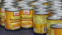 Which Brand Of Canned Pumpkin Is The Best?