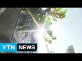 [날씨] 일요일까지 푹푹 찐다...내주 초 누그러져 / YTN (Yes! Top News)
