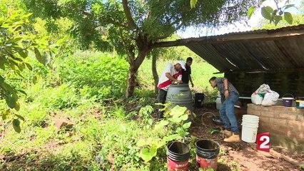 Salvador : les pesticides hors la loi