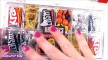 CHOCOLATE Candy BONANZA! Chocolate BAND-AIDS Giant Reeses & Kiss! Hershey Survivor BOX! FUN