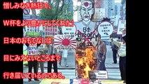 日本 ホスト国 海外の反応