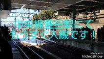 さよなら189系189系M5編成ラストラン!2018.1.25豊田駅