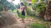Wow! Incredible Girl Catch Village Snake with Hand / How To Catch Village Snake In My Village