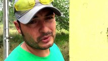 Bee Hive Removal in the Brush Country by Luis Slayton of Bee Strong Honey and Bee Removal