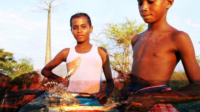 Les incontournables de Madagascar par Petit Futé