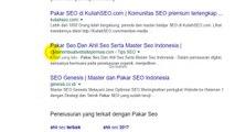 Pakar seo dan Ahli Seo Serta Master Seo Indonesia
