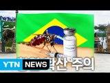 브라질 황열 확산, 출국 전 예방접종 하세요! / YTN (Yes! Top News)
