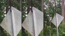 Un pivert stupide découvre un panneau de signalisation
