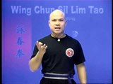 Wing Chun kung fu siu lim tao - form  applications Lessons 4-10