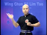 Wing Chun kung fu siu lim tao - form  applications Lessons 2-10