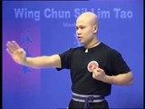 Wing Chun kung fu siu lim tao - form  applications Lessons 1-10