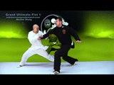 Tai Chi combat tai chi chuan fight style use tai chi - lesson 3
