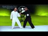 Tai Chi combat tai chi chuan fight style use tai chi - lesson 14