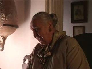 Dominique Aubier - Don Quichotte et la kabbale
