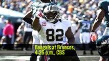N.F.L. Picks Week 11: Saints Over Redskins, Eagles Over Cowboys