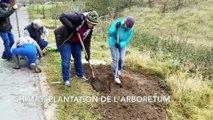 Chimay: l'arboretum est planté le long du RAVeL