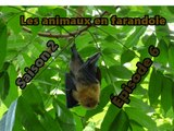 Les animaux en farandole: saison 1: épisode 6