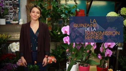 QuinzaineTR // La reprise de Marie Fichera