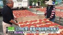 11月旺季! 烏魚卵1台斤900元
