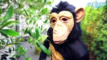 Fun Monkey Throws Bananas in Fun Baby Pool _ Learn Colors with Banana Pool for Children-x34JdSjoO3Q