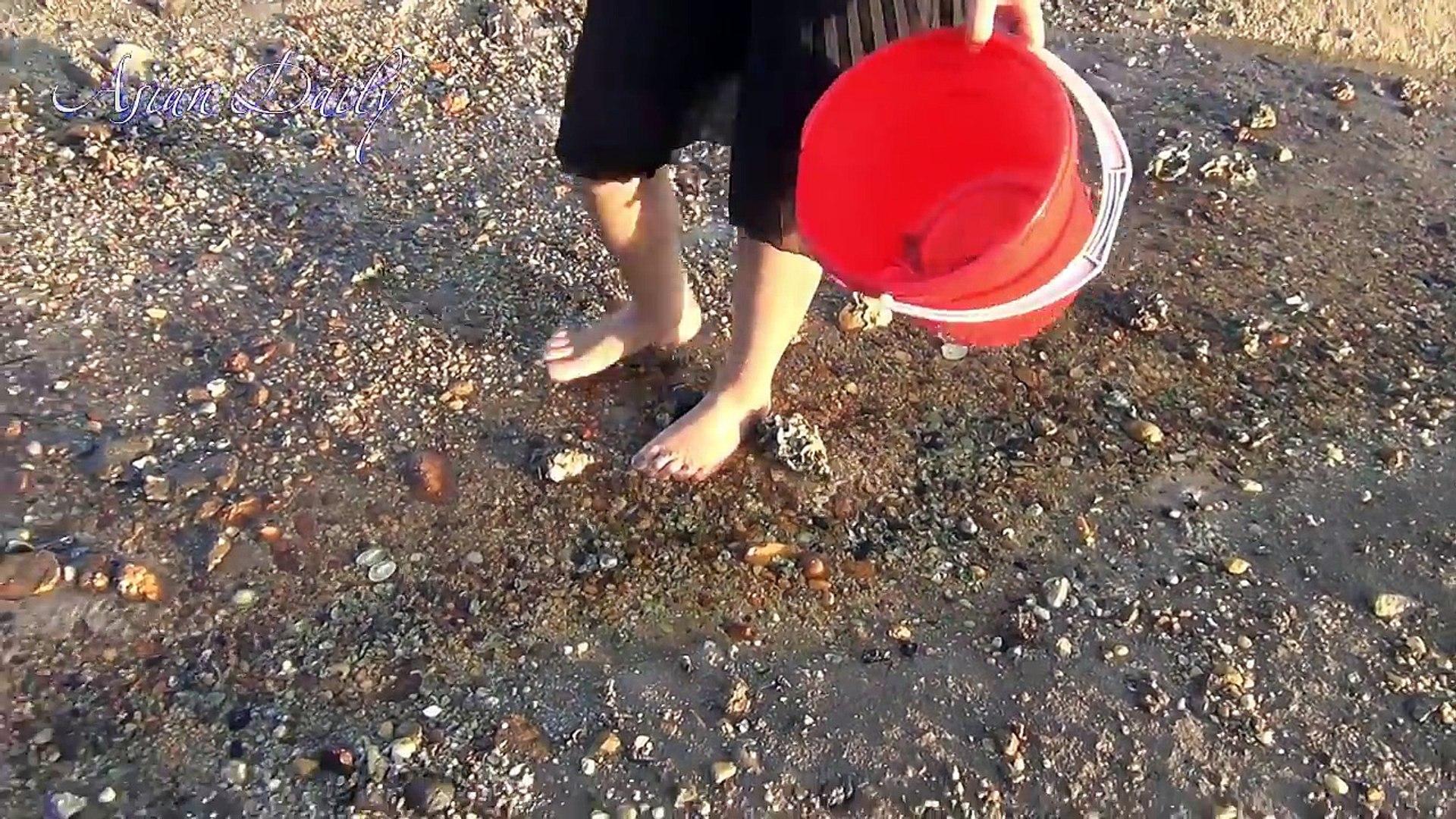 WoW !!! Amazing Beautiful Girl Catch Stomatopoda | How to catch Stomatopoda