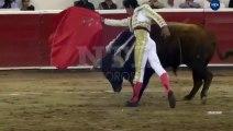 Un taureau se venge contre un torero en l'encornant dans les parties intimes