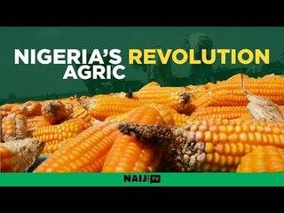 Nigeria's agricultural revolution kick-starts in Nasarawa state