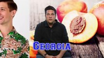 50 State Word Association With Dom Joly | Daily Funny | Funny Video | Funny Clip | Funny Animals