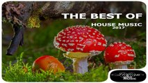 VARIOUS ARTISTS - HOUSE MUSIC-THE BEST OF HOUSE MUSIC - Club house,party house,big room,m2o