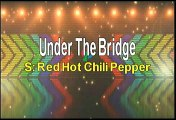 Red Hot Chili Peppers Under The Bridge Karaoke Version