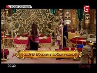 Adhiraja Dharmashoka 25/11/2017 - 256
