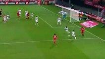 Kwon Chang-Hoon Goal HD - Dijon 1-0 Toulouse 25.11.2017