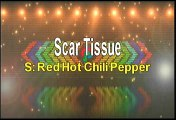 Red Hot Chili Peppers Scar Tissue Karaoke Version