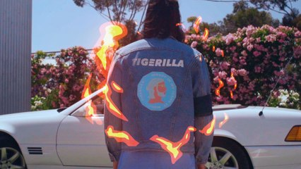 Tigerilla - Money In My Jeans