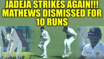 India vs SL 2nd test 4th day : Angelo Mathews dismissed by Jadeja, Lankans in trouble |Oneindia News