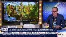 Anthony Morel: Des robots maraîchers - 28/11