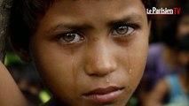 Rohingyas : l'impossible retour ?