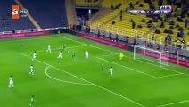 Hasan Ali Kaldirim Goal HD - Fenerbahce 3-0 Adana Demirspor 29.11.2017