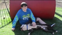 Three-Legged Dog Adopted by Boy Who Lost a Leg to Cancer