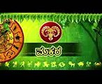 Capricorn ಮಕರ  Astrology  Horoscope for 2017  Ravi Shanker Guruji  Kannada Astrology  Horoscope