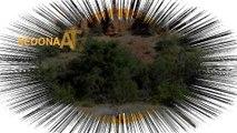 Best ATV Rentals in Sedona & The Verde Valley | ATV Rentals Sedona AZ - Vortex Healing ATV Rental