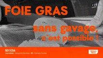 Foie gras sans gavage : c'est possible !