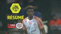 EA Guingamp - Montpellier Hérault SC (0-0)  - Résumé - (EAG-MHSC) / 2017-18